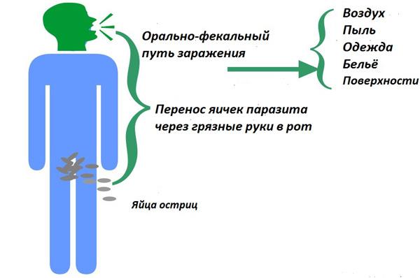 1-puti-zarazheniya.jpg