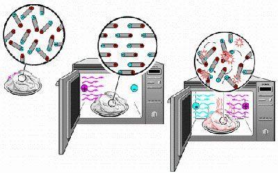 Влияние микроволновки на пищу