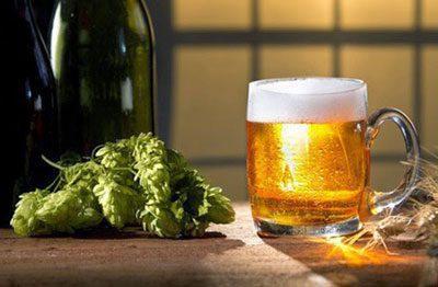Хмель для пива