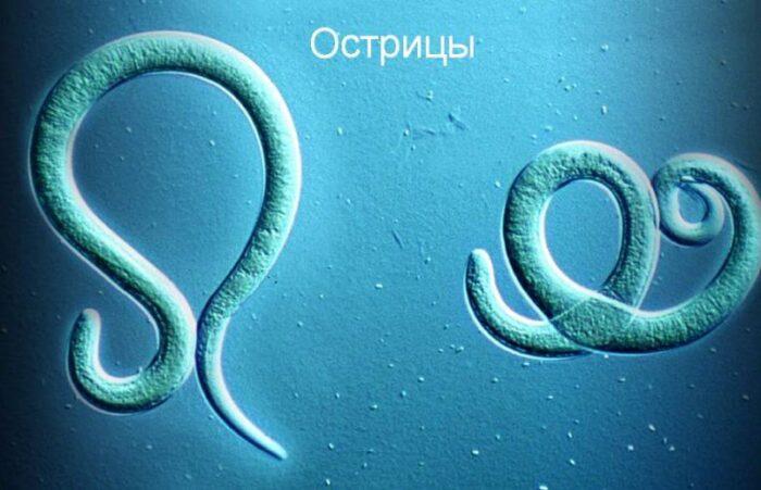 217_ostricy-u-detey-vyglyadyat-800x515.jpg