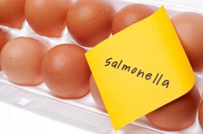 Причины, симптомы, диагностика и лечение сальмонеллеза