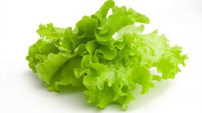 Салатные листки