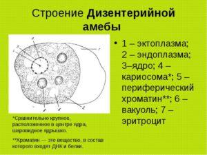 4a13e5bc537426a9d21c2bec7523b231.jpg