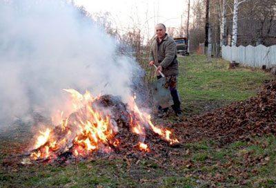 Сжигание сухих листьев