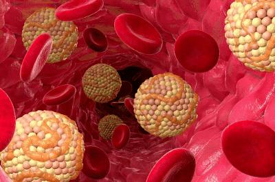 снижение уровня холестерина в крови;