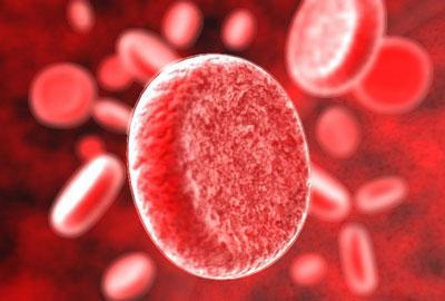 Продукты, способствующие очистке крови