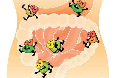 Микробы в кишечнике