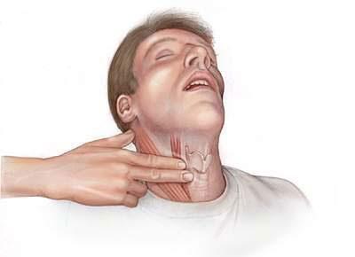 Пульс на шее