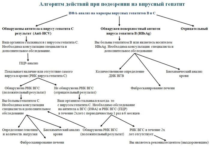 ALGORITM1.jpg