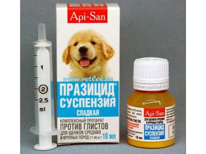 Lekarstva-ot-glistov-dlya-shhenkov.jpg