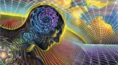 Наладить мозговую активность
