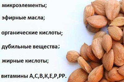 Состав косточек абрикоса
