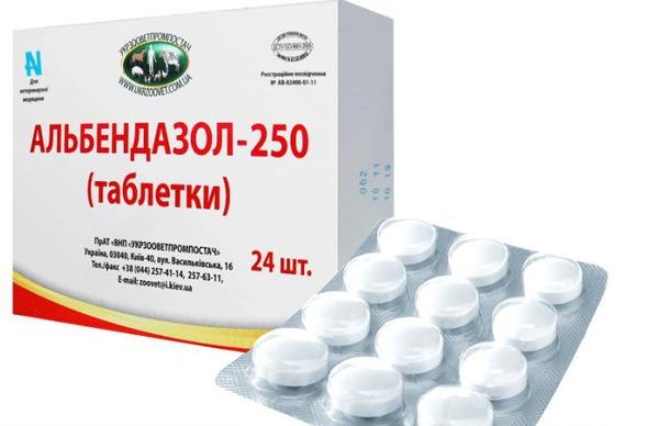 albendazol-ot-glistov.jpg