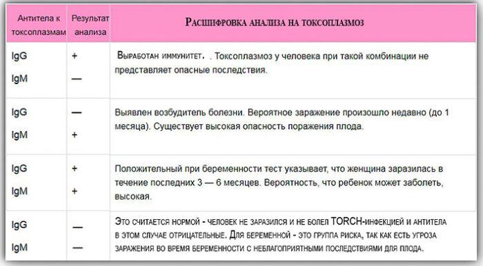 antitela-pri-toxoplasmose.jpg