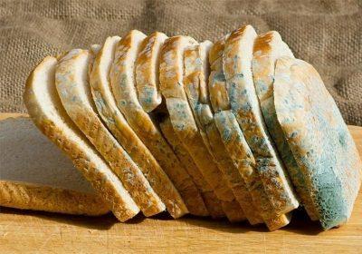 Зараженный хлеб