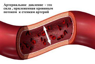 Определение артериального давления