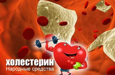 Народные средства от повышенного холестерина в крови лечебные рецепты