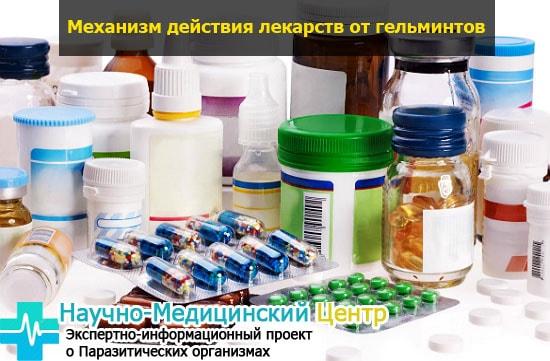 deistvie_lekarst_ot_glistov_gemoparazit_w122-min.jpg