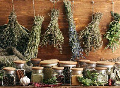 Травы для народной медицины