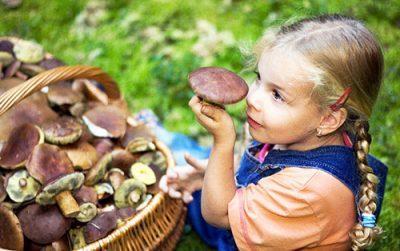 Отравление грибами у детей