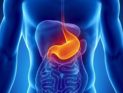 Понижается тонус желудка