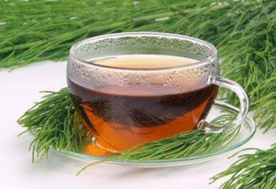 Чай из полевого хвоща