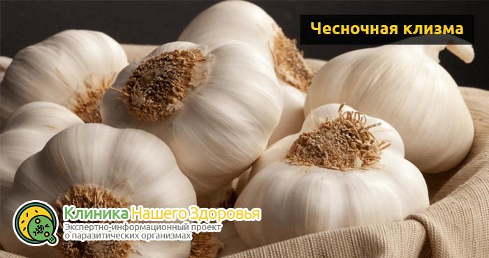lechenie-gelmintov-u-cheloveka-12.png