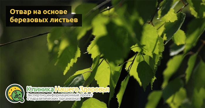 lechenie-glistov-narodnymi-sredstvami-11.png
