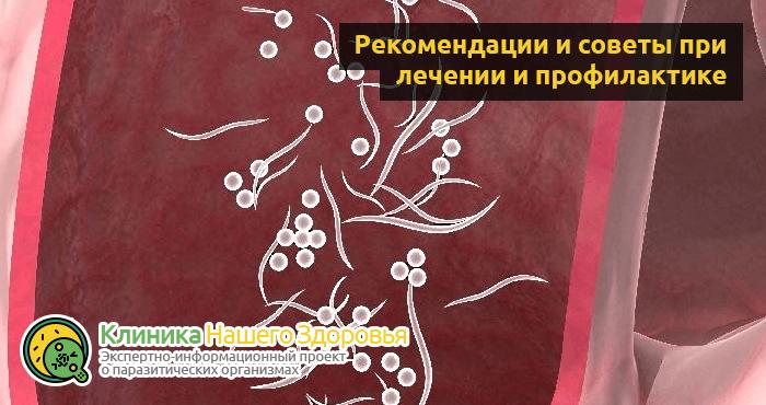 lechenie-ostric-v-domashnix-usloviyax-11.png