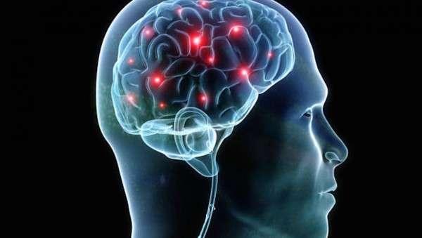 mozgovye-parazity.jpg