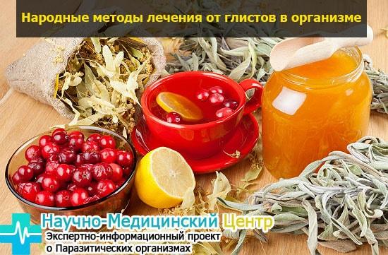 narodnue_metodu_ot_glistov_gemoparazit_w115-min.jpg