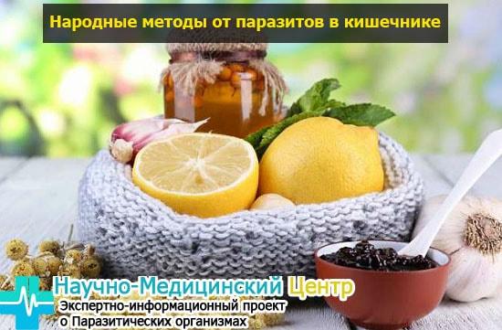 narodnue_metodu_ot_parazitov_gemoparazit_w17-min.jpg