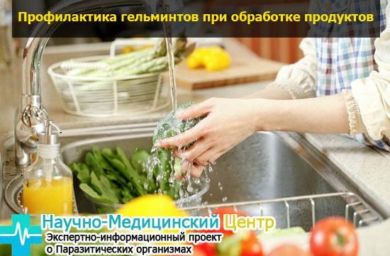 obrabotka_prodyktov_pitania_gemoparazit_w153-min.jpg