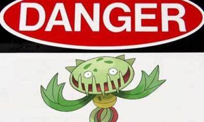 Самые опасные яды из растений
