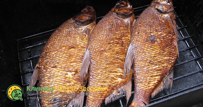 opistorxoz-ryby-4.png