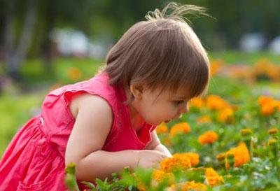 Симптомы и первая помощь при отравлениях ядовитыми растениями