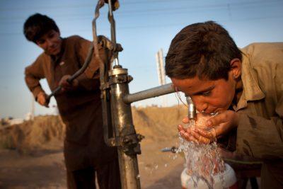 Пьет воду из колодки