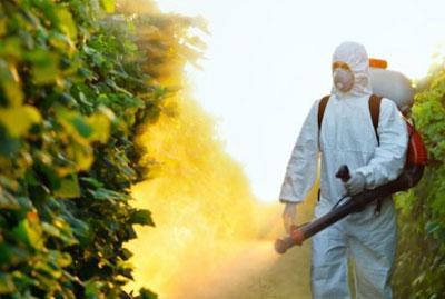 Симптомы и лечение отравления пестицидами