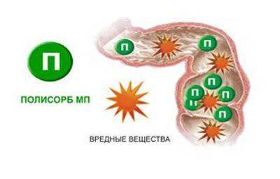 Механизм действия энтеросорбента