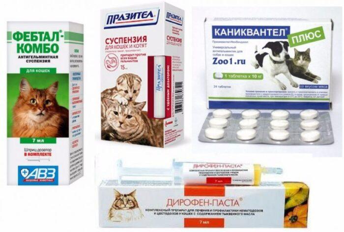 препараты-от-глистов.jpg