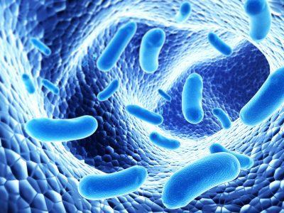 Патогенный микроорганизм