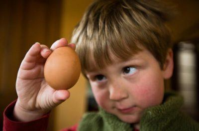 Дети едят яйца