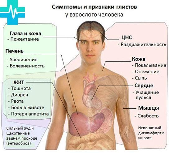 simptomu_glistov_y_cheloveka_gemoparazit_w41-min.jpg