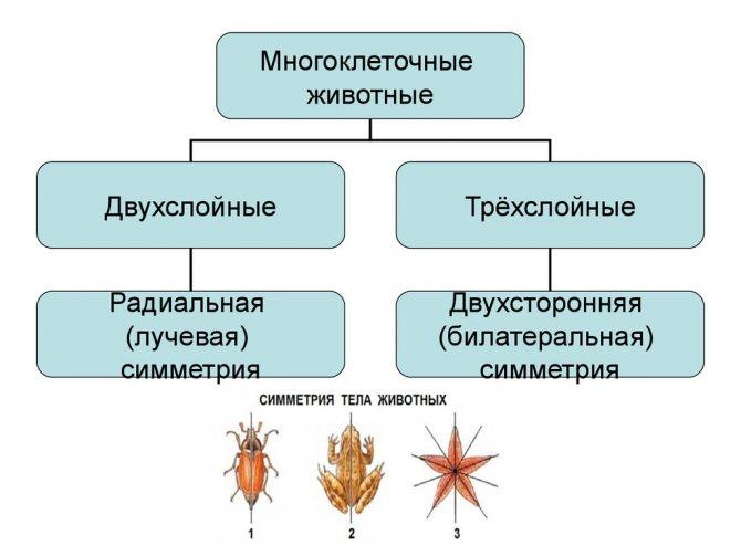 slide-34.jpg