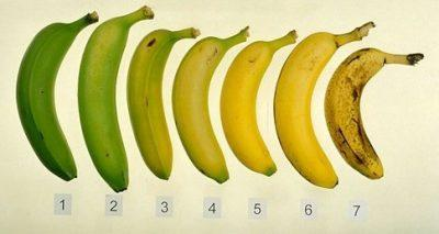 Степени спелости бананов