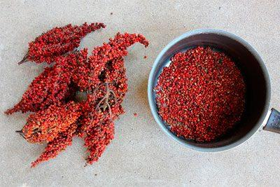 Гомеопатическое сырье из сумаха