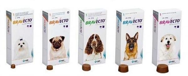 tabletki-bravekto-dlya-profilaktiki-piroplazmoza-u-sobak.jpg