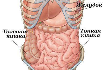 Очищение толстого и тонкого кишечника