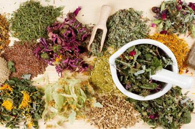 10 самых полезных трав для организма