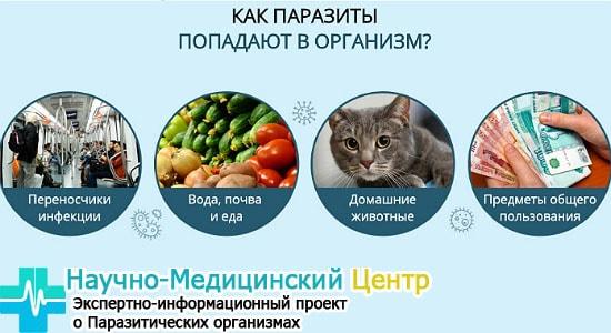 zarajenie_parazitami_gemoparazit_w13-min.jpg